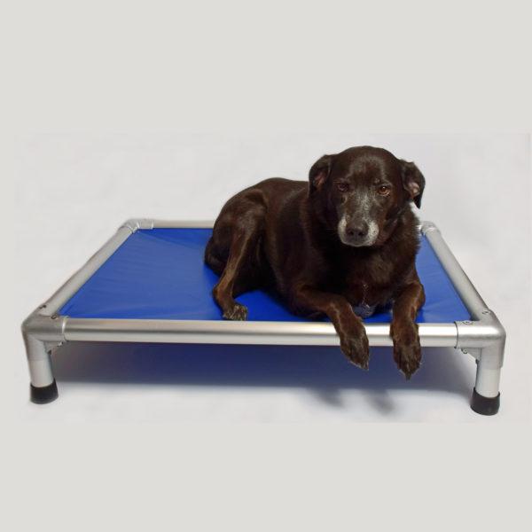lit pour chien indestructible résistant incassable kumbow